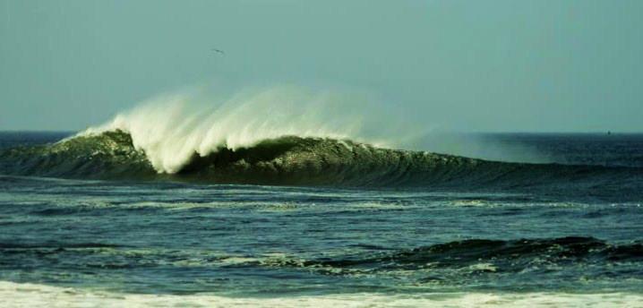 photo credits: Club del Surf