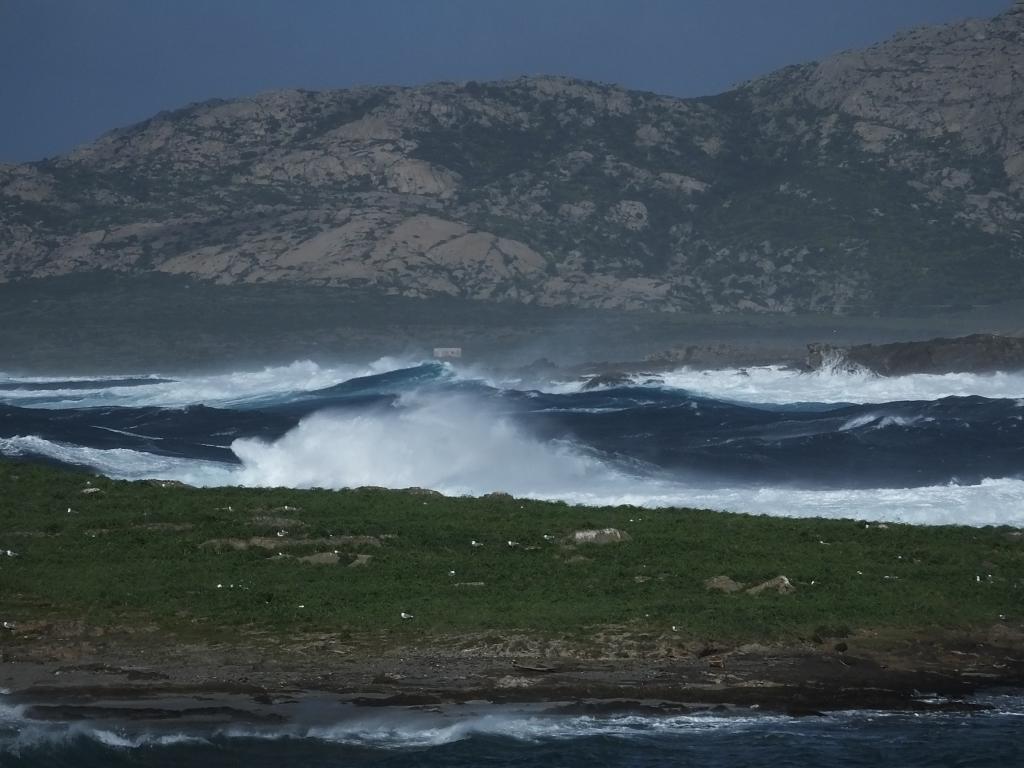 Capo Falcone waves